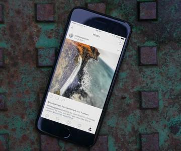 Cómo ocultar fotos vergonzosas de Instagram de tu perfil