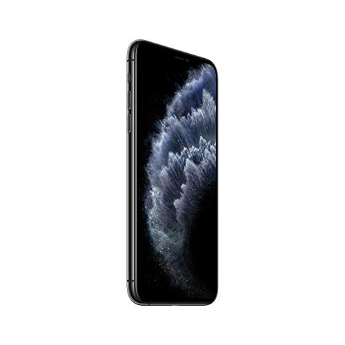 Apple iPhone 11 Pro Max (256GB) - Gris Espacial