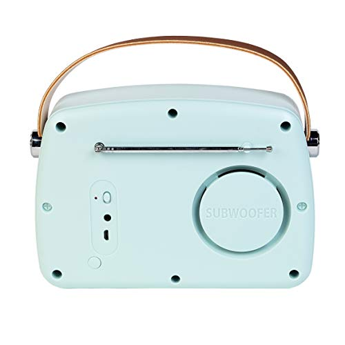 Intempo EE3332BLUSTKEU Rechargeable Bluetooth Speaker with FM Radio and Leather Carry Strap for iPhone, Android or Other Smart Devices, 5 W Speaker Output with Micro USB Charging Cable, Blue