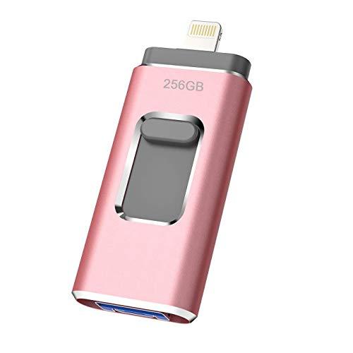 iweed Memoria USB 256GB Pendrive para iPhone OTG Android iPad iPod Computadoras Laptops Flash Drive Expansión de Memoria USB 3.0 (256gb)