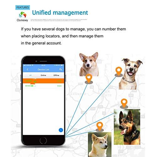 UPANV Rastreador GPS para Mascotas Dispositivo De Seguimiento De Perros Búsqueda De Luz Localizador GPS Impermeable Anti-Perdida Alarma En Tiempo Real Control Remoto Aplicación Gratuita,Naranja