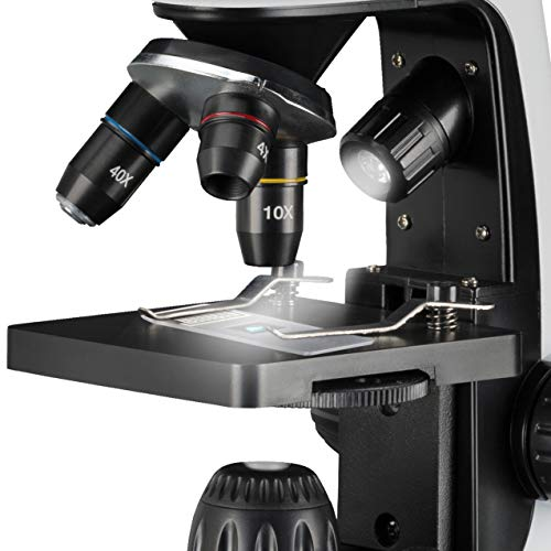 Bresser Junior Microscopio 40 x 2000 x con Innovador Soporte para Smartphone e iluminación LED Regulable de luz y Transparente