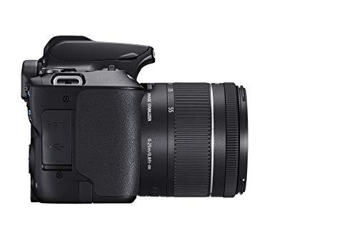 Canon EOS 250D + EF-S 18-55mm f/4-5.6 IS STM Juego de cámara SLR 24,1 MP CMOS 6000 x 4000 Pixeles Negro - Cámara Digital (24,1 MP, 6000 x 4000 Pixeles, CMOS, 4K Ultra HD, Pantalla táctil, Negro)