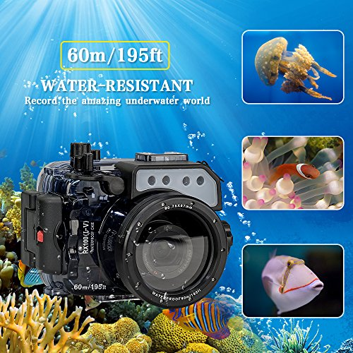 Sea frogs para RX100V RX100IV RX100III RX100II RX100 195ft / 60m Carcasa submarina