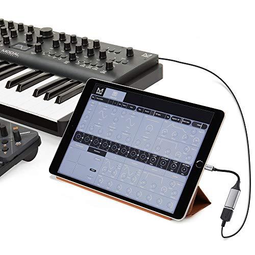 Sunshot - Adaptador USB Hembra OTG para iPhone/iPad, Compatible con iOS 13 y posteriores, Compatible con cámara, Unidad Flash, Teclado, Lector de Tarjetas y más (Color Gris)