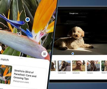 Cómo utilizar Google Lens en tu iPhone o iPad